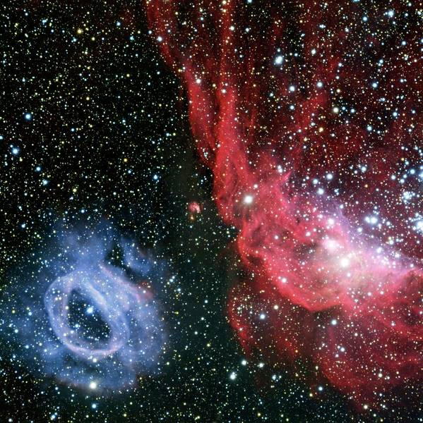 2020 Wall Art - Photograph - Nebulae Ngc 2020 And Ngc 2014 by European Southern Observatory