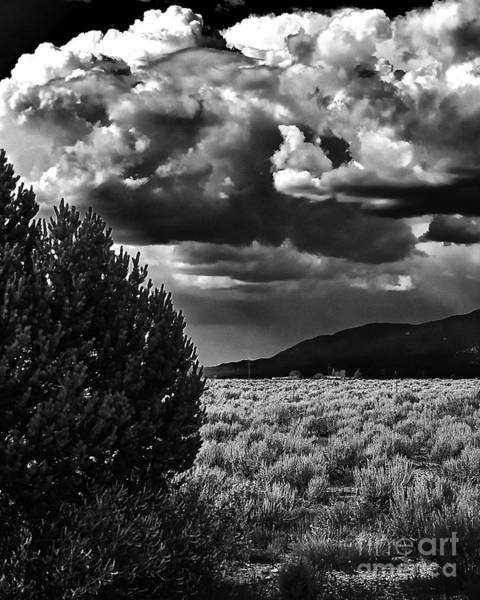 Photograph - Needed Rain IIi by Charles Muhle