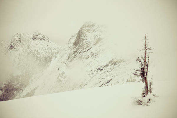 Trees In Fog Photograph - Needle Peak Winter Ascent by Christopher Kimmel