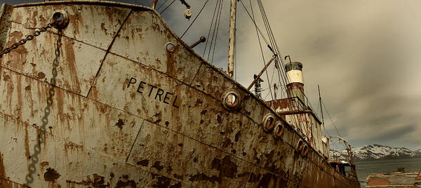 Save The Whales Photograph - Neglected Whaling Boat by Amanda Stadther