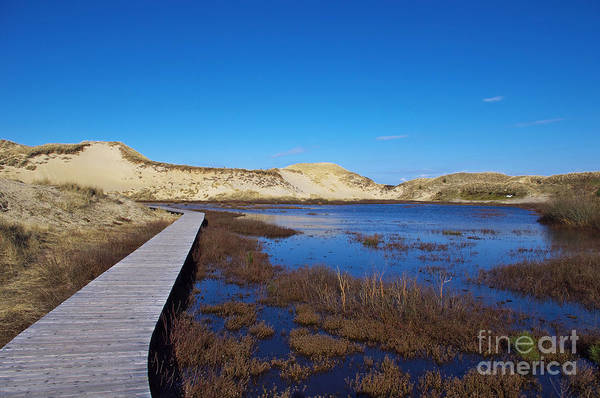 Photograph - Dune Lake by Angela Doelling AD DESIGN Photo and PhotoArt