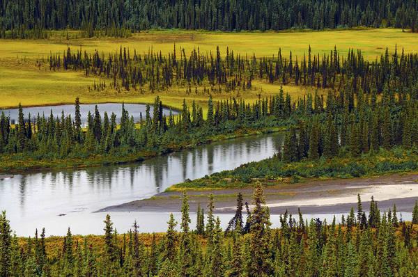 Wall Art - Photograph - Nenana River In Autumn, Denali Highway by Michel Hersen