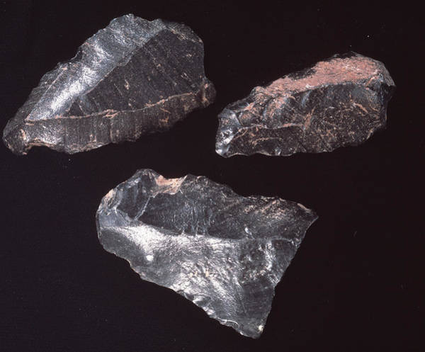 Prehistoric Photograph - Neolithic Stone Tools by Sheila Terry/science Photo Library