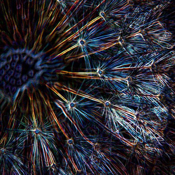 Marijuana Mixed Media - Neon Dandelion by Ernie Echols