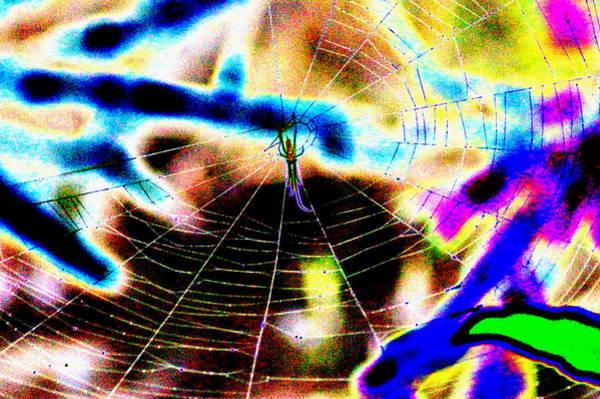 Neon Spider Art Print