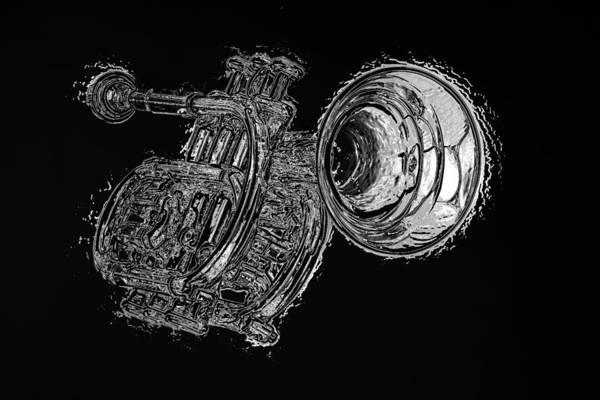 Photograph - Nervous Trumpet by M K Miller