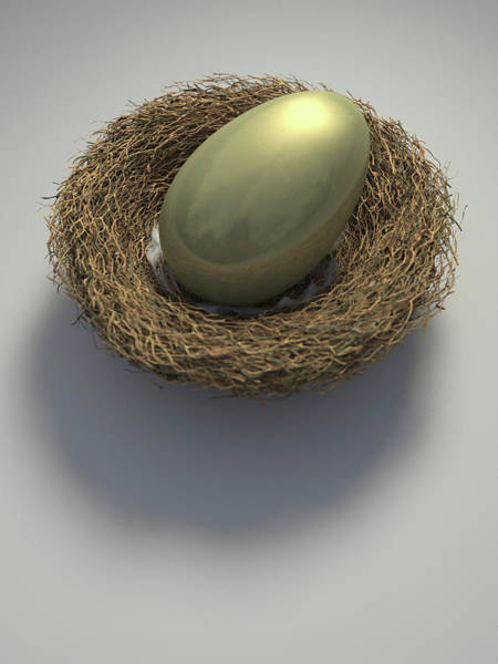 Wall Art - Photograph - Nest With Large Golden Egg by Ikon Images