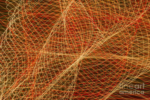 Photograph - Net For The Fish Of Light by Gerald Grow