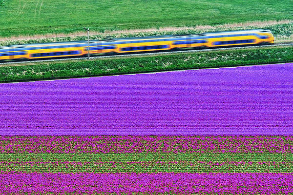Wall Art - Photograph - Netherlands, Aerial View Of Train On by Luisbonito