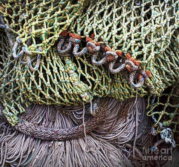Knot Wall Art - Photograph - Nets And Knots Number Three by Elena Nosyreva