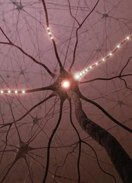 Color Image Digital Art - Neural Network, Artwork by Ktsdesign
