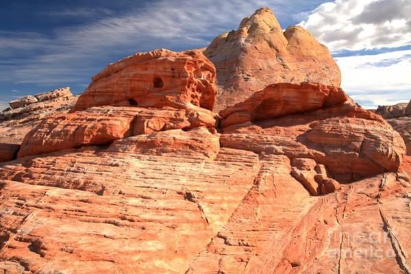 Photograph - Nevada Desert Cupcakes by Adam Jewell
