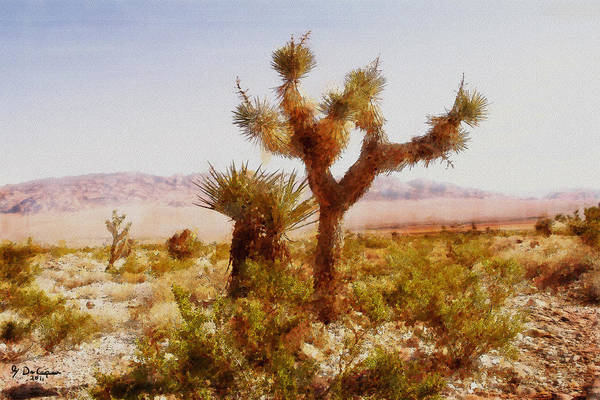 Nevada Desert Art Print