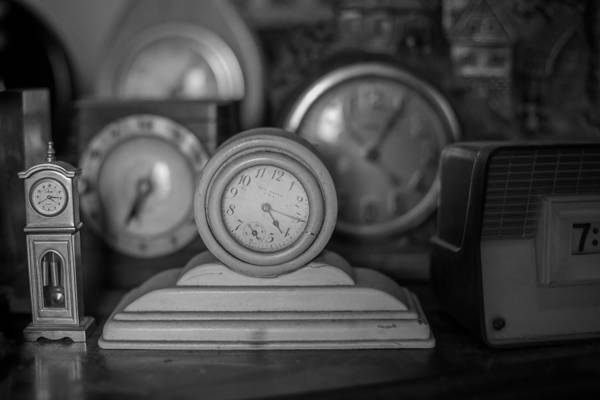 Photograph - Never Enough Time by Sara Hudock
