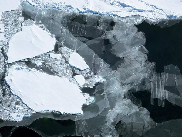 Ice Floe Photograph - New And Old Sea Ice by Maria-jose Vinas, Nasa/science Photo Library