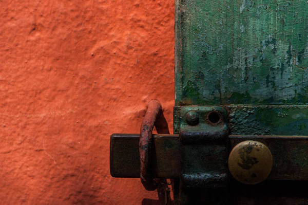 Photograph - New Color Scheme Camouflages Rust And Mold by Alex Lapidus