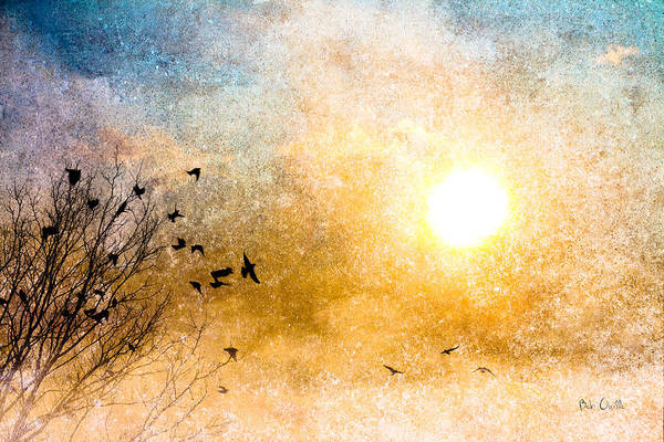Uplift Photograph - New Day Yesterday by Bob Orsillo