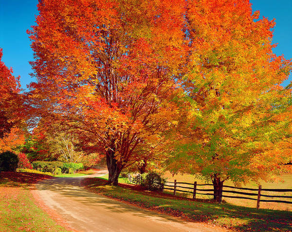 New England Autumn Photograph - New England Autumn Country Road by Dszc