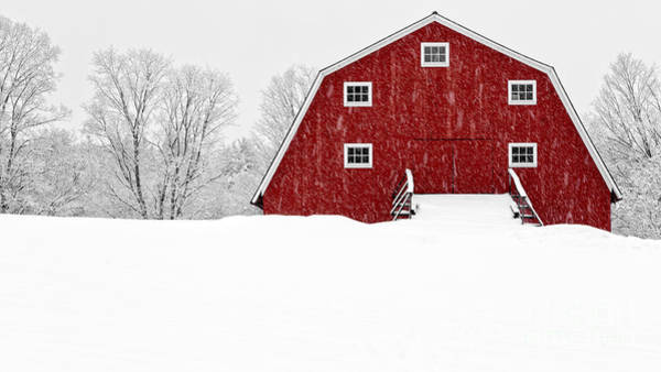 Limited Edition Wall Art - Photograph - New England Red Barn In Winter Snow Storm by Edward Fielding