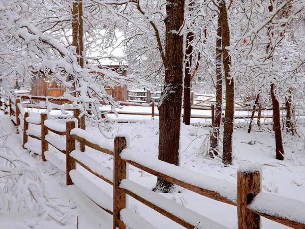 Wall Art - Photograph - New England Winter by Dianne Cowen