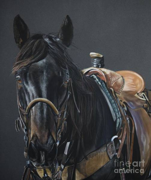 Horse Head Wall Art - Pastel - New Guy On The Job by Joni Beinborn