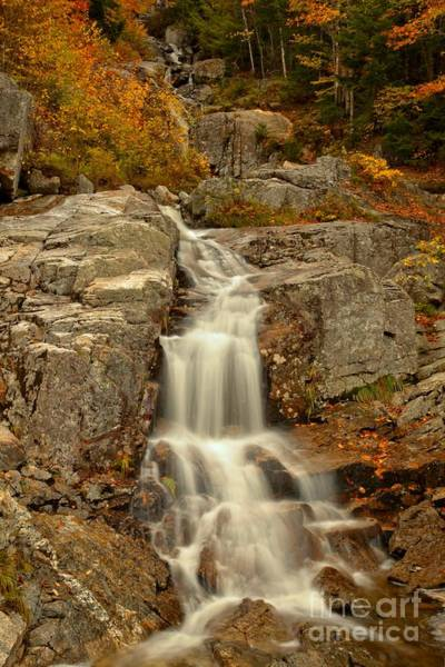 Photograph - New Hampshire Flume Cascade by Adam Jewell