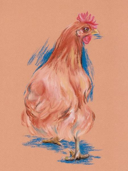 Pastel - New Hampshire Red Hen by MM Anderson