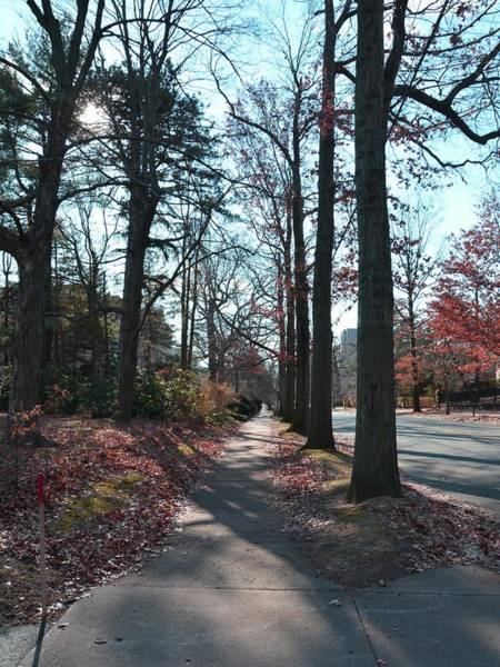 Photograph - New Haven In November by Keith Stokes