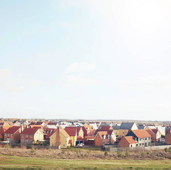 Housing Development Photograph - New Houses by Tim Robberts