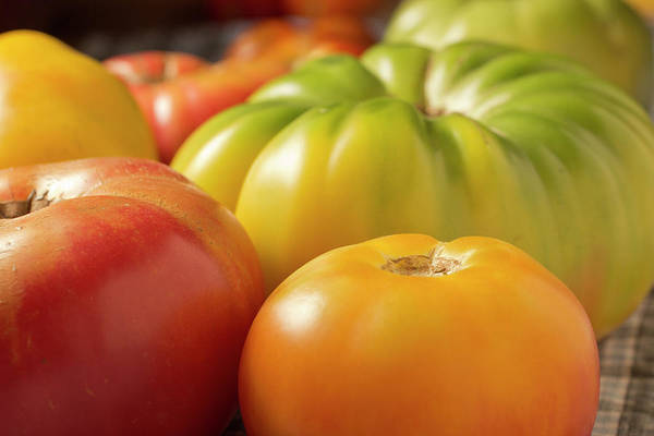 Season Photograph - New Jersey Heirloom Tomatoes by Brian Yarvin
