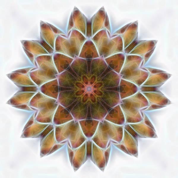 Digital Art - New Life Mandala by Beth Sawickie