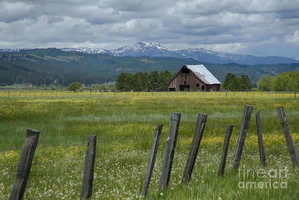 Wall Art - Photograph - New Meadows Barn by Idaho Scenic Images Linda Lantzy