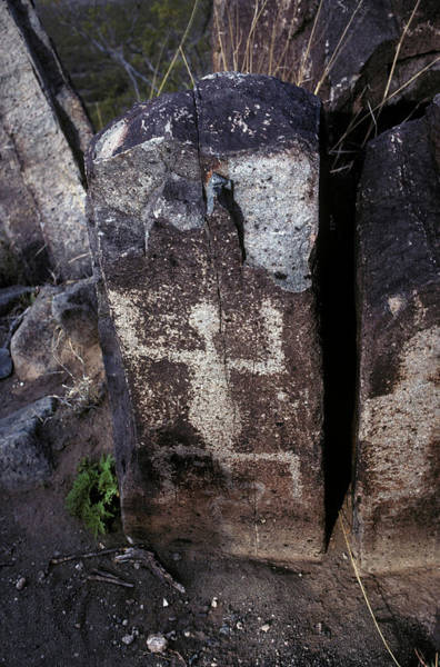 Petroglyph Photograph - New Mexico by Scott Warren