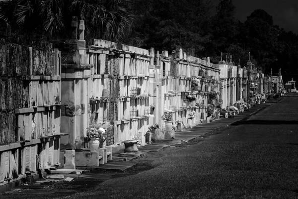 Photograph - New Orleans St Louis Cemetery No 3 by Christine Till