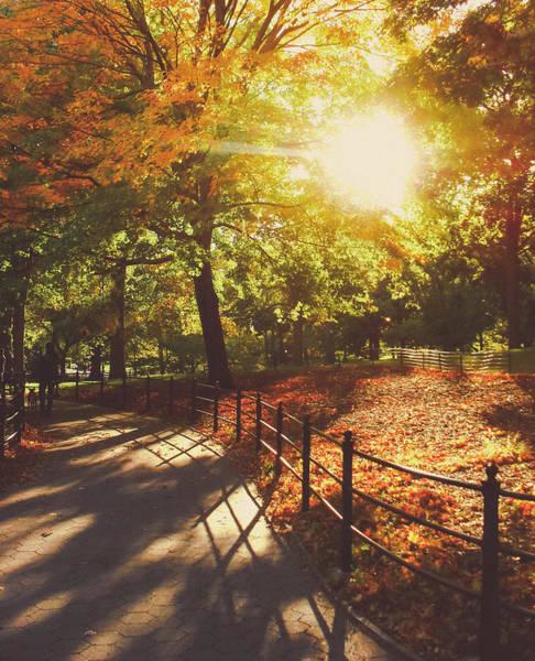 Wall Art - Photograph - New York Autumn - Sunset - Central Park by Vivienne Gucwa