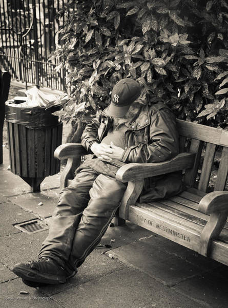 Photograph - New York Bum In Westminster by Ross Henton