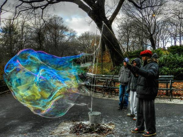 Photograph - New York City - Central Park 002 by Lance Vaughn