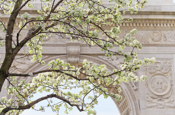 Washington Square Park Wall Art - Photograph - New York City, New York, Close Up Of by Tetra Images