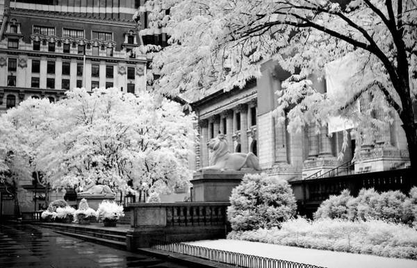 New York Public Library Ir Art Print