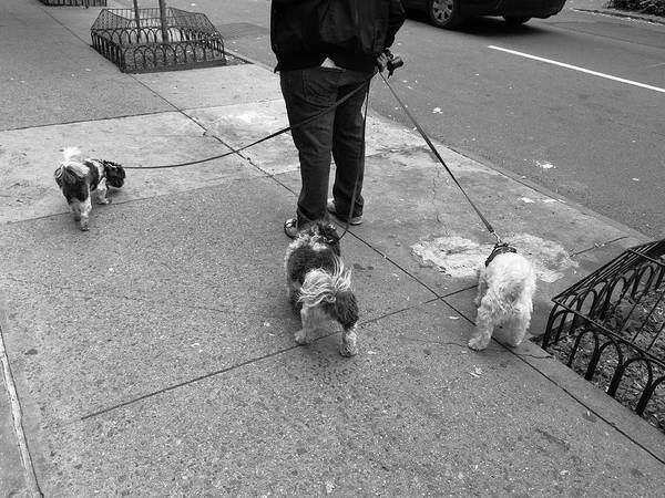 Photograph - New York Street Photography 36 by Frank Romeo
