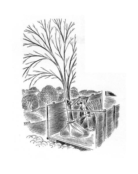 Gardener Drawing - New Yorker April 19th, 1941 by Richard Taylor