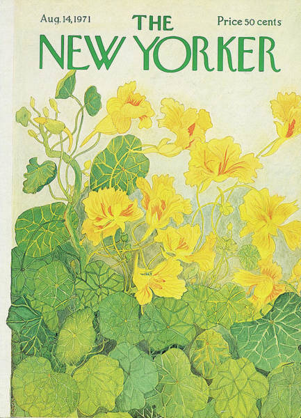Flower Painting - New Yorker August 14th, 1971 by Ilonka Karasz