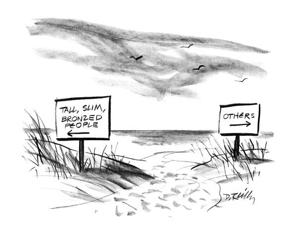 Seashore Drawing - New Yorker August 18th, 1986 by Donald Reilly