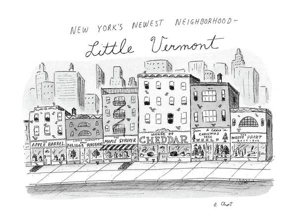 Storefront Drawing - New Yorker December 22nd, 1986 by Roz Chast
