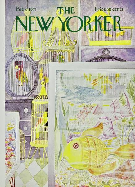 Pet Store Painting - New Yorker February 6th 1971 by Charles Martin