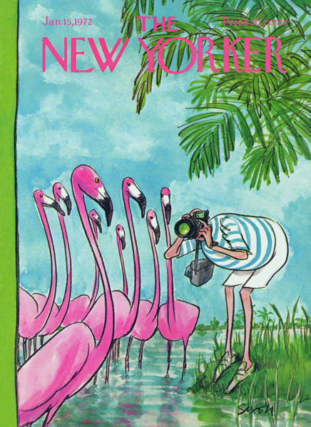 Pink Painting - New Yorker January 15th, 1972 by Charles Saxon