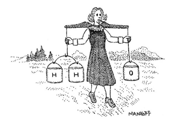 Rural Drawing - New Yorker July 18th, 1977 by Robert Mankoff