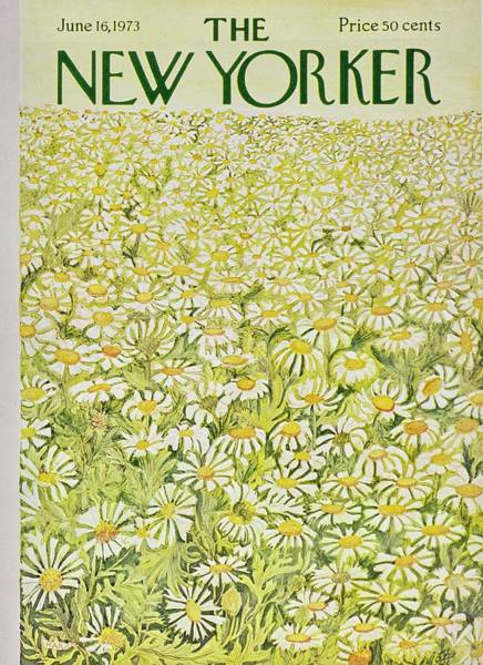 Plants Painting - New Yorker June 16th 1973 by Ilonka Karasz