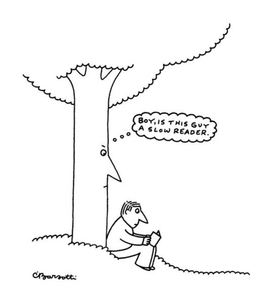 Tree Drawing - New Yorker June 26th, 1995 by Charles Barsotti