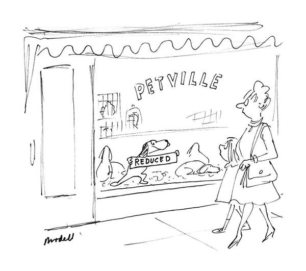 Pet Store Drawing - New Yorker June 29th, 1987 by Frank Modell